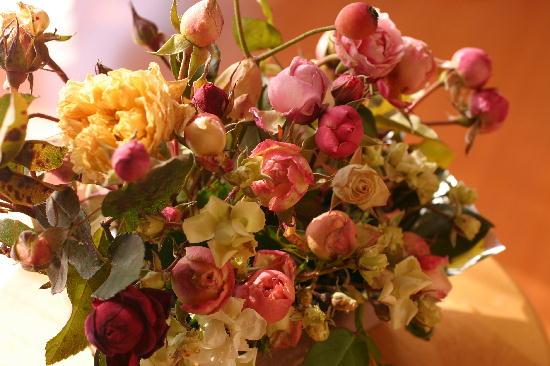 1月のバラ 1